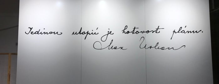 Galerie Lucerna – Prostor pro současné umění is one of Pražská muzejní noc 2016 | Prague Museum Night.