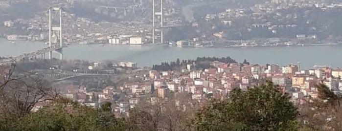 Çorum-İstanbul Yolu is one of Gözde Mekanlar.