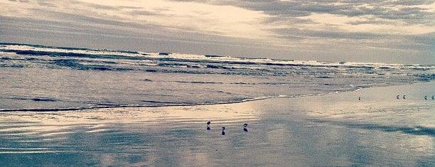 Gearhart Beach is one of Shelley: сохраненные места.