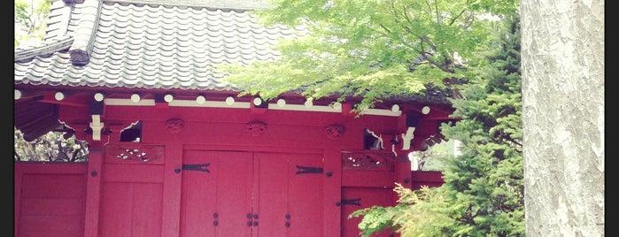 代沢阿川家の門 is one of せたがや百景 100 famous views of Setagaya.