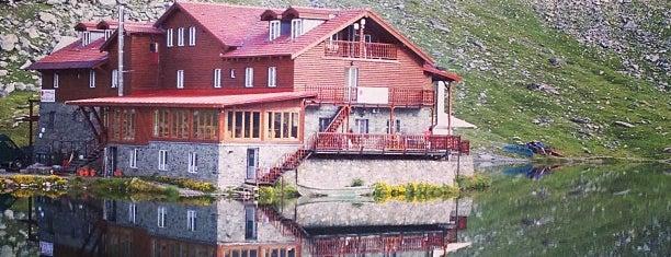 Cabana Bâlea Lac is one of Orte, die Radu gefallen.