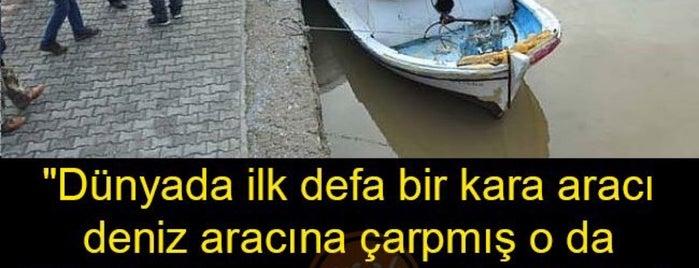 TÜRKİYE CUMHURİYETİ is one of Murat karacimさんのお気に入りスポット.