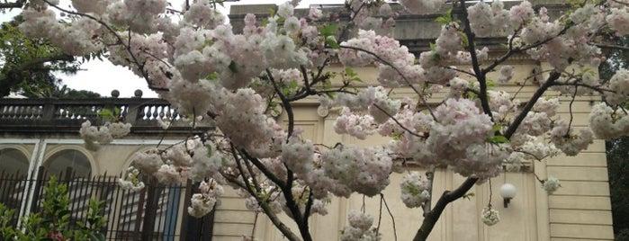 Jardín Japonés is one of Conaprole Trip.