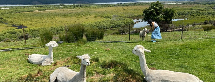 Glenorchy Animal Farm is one of New Zealand 2018.