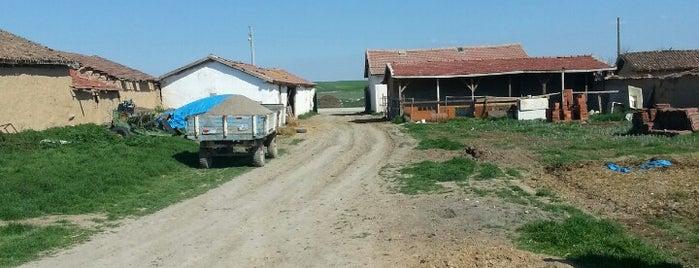 Çardakbaşı is one of Alpu Belde ve Köyleri.