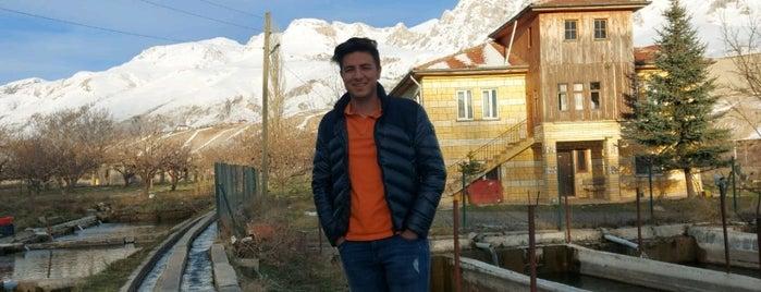 Dokuzgöz Alabalik Et Mangal is one of Lugares favoritos de Fatih.