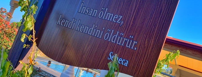 Natur-Med Doğal Tedavi ve Termal Kür Merkezi is one of Lugares guardados de E.