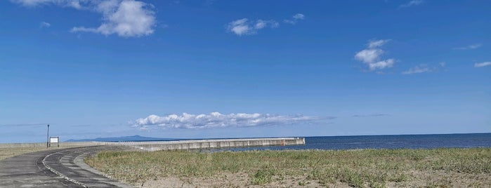 海の公園 is one of Orte, die 高井 gefallen.