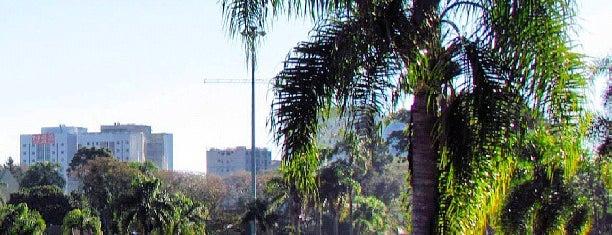 Parque General Iberê de Mattos (Parque Bacacheri) is one of Meus Favoritos.