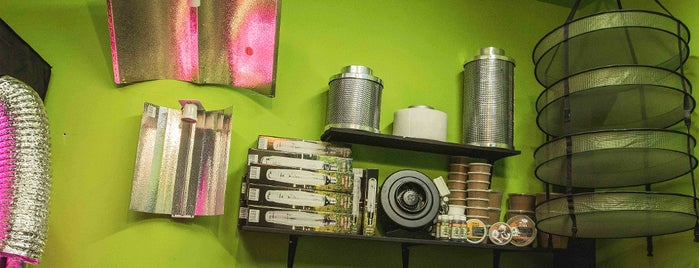 Hostel Santa María, Cannabis & Marijuana Friendly with Growshop is one of montevideo.
