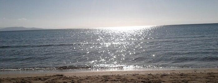 Artemida is one of Locais salvos de ma.