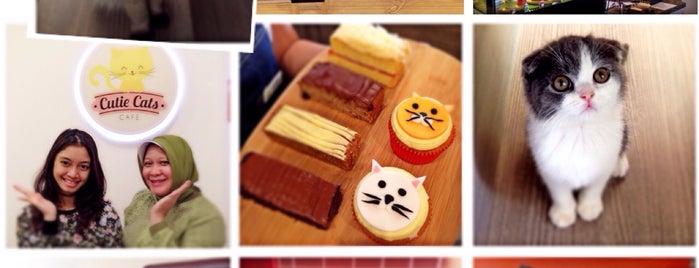 Cutie Cats Café is one of Lugares favoritos de Arie.