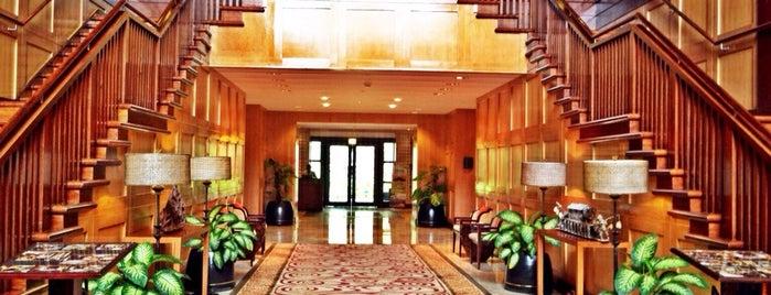 Rimba Papua Hotel is one of สถานที่ที่ Arie ถูกใจ.