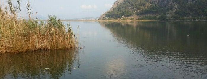 Sülüngür Gölü is one of Locais curtidos por Abdullah.