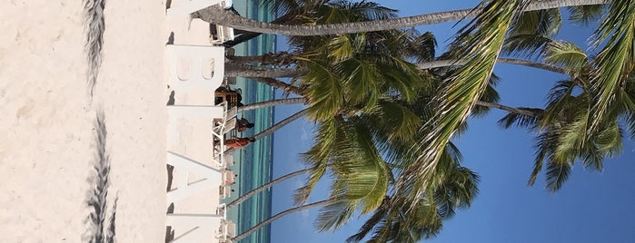 Playa Blanca Restaurant is one of Tempat yang Disukai Rolando.