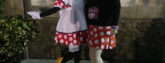 Disney Wine & Dine Half Marathon is one of Best Of DizKnee.