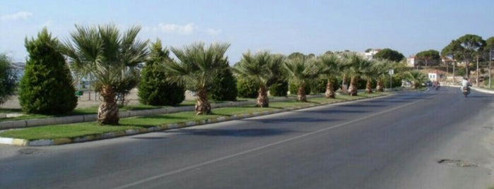Ayvalık - Cunda Yolu is one of Pelin : понравившиеся места.