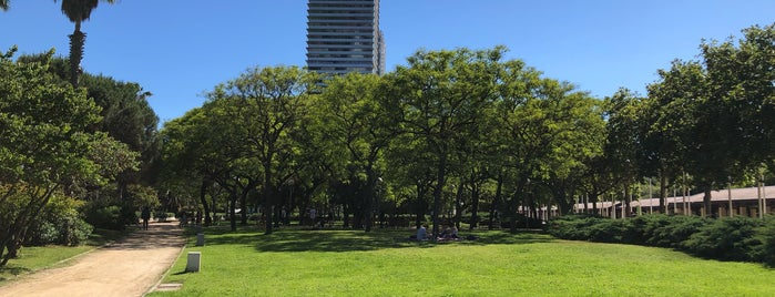 Plaça dels Campions is one of สถานที่ที่ Adriana ถูกใจ.