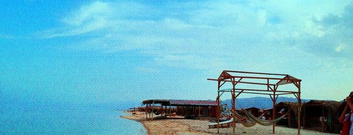 Bawaki Beach Hotel Nuweiba is one of Best Around the World!.