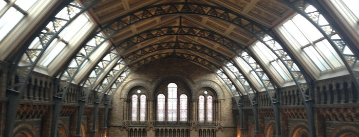 Museo de Historia Natural is one of London.