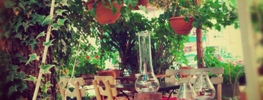 Sardunya Cafe is one of ankara to do.