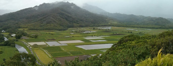 Hanalei Valley Lookout is one of Places to Visit: Kauai, HI.