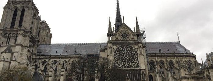 Собор Парижской Богоматери is one of Camila : понравившиеся места.