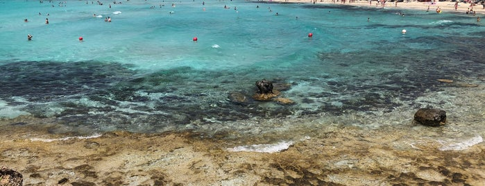 Nissi Beach is one of Locais curtidos por *****.