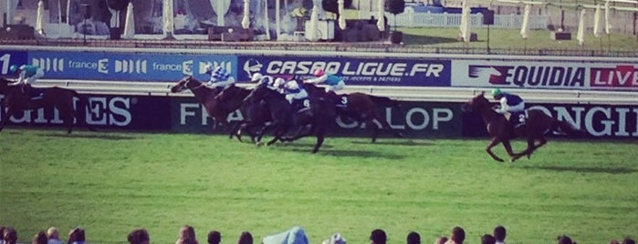 Hippodrome de Chantilly is one of Tempat yang Disukai Henry.
