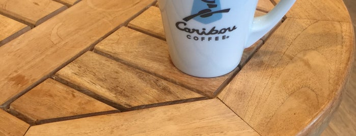 Caribou Coffee is one of Orte, die Alper gefallen.