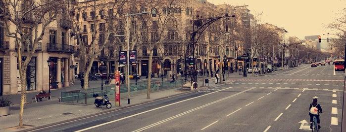 Barcelona Tourist Bus is one of Barcelona.