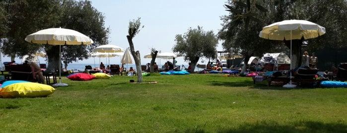 Safir Beach is one of Beach&haven.