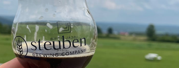 Steuben Brewing Company is one of Finger Lakes NY.