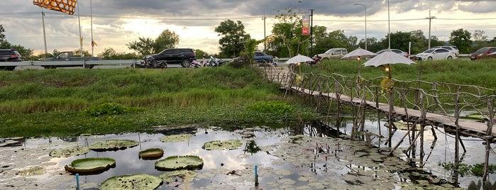 ร้านบัวกระด้ง is one of ลพบุรี สระบุรี.