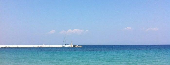 Kokoras is one of Samos.