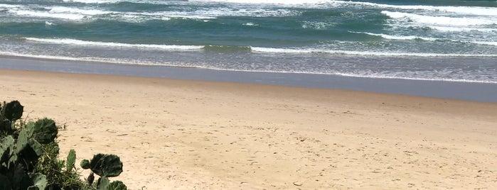 Praia de Porto de Galinhas is one of Locais curtidos por Farid Meire.