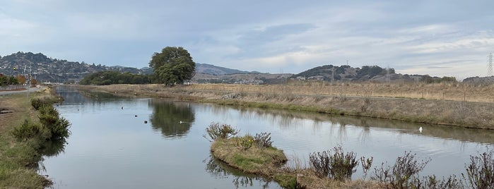 Corte Madera Marsh Ecological Preserve is one of CBS Sunday Morning.
