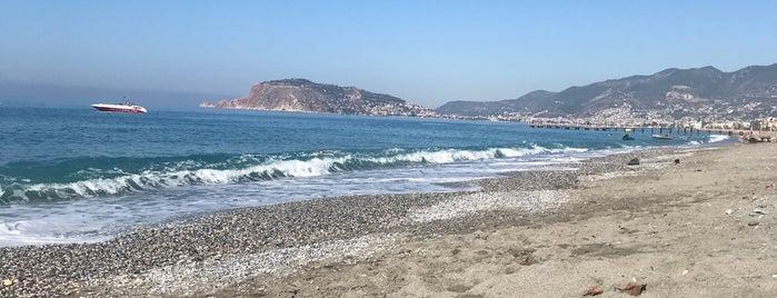 Club Paradiso Hotel & Resort (Beach) is one of Gespeicherte Orte von Özcan Emlak İnş 👍.