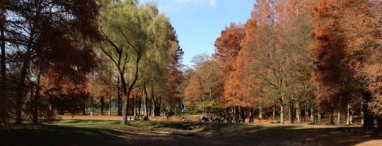 Akigase Park is one of Locais curtidos por Masahiro.
