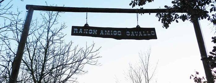 Maneggio Amico Cavallo Di Varoli Francesco is one of Estate 2015.