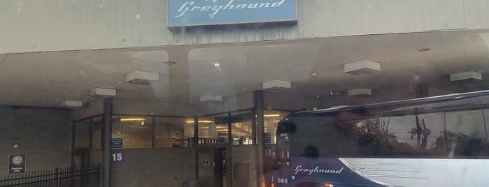 Greyhound: Bus Station is one of Lieux qui ont plu à Jonathon.