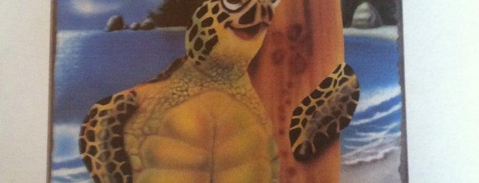 Turtle Shack Cafe is one of Gespeicherte Orte von Amy.