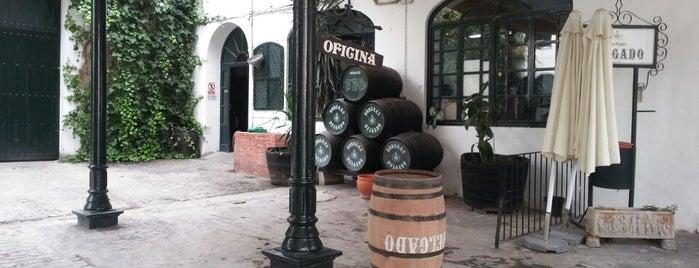 Bodegas Delgado is one of Que visitar en la provincia de cordoba.