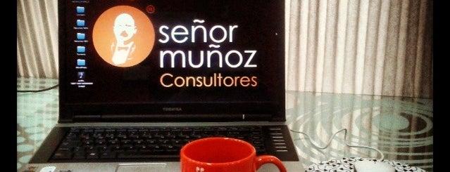 SEO Marbella Señor Muñoz is one of SEO Companies.