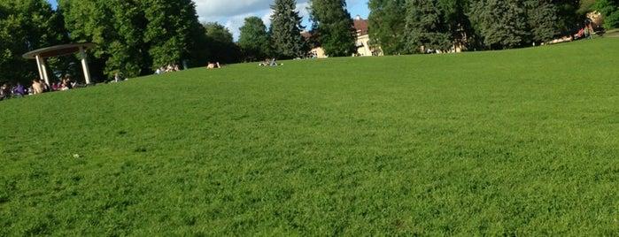 Torshovparken is one of Oslo ✈️.