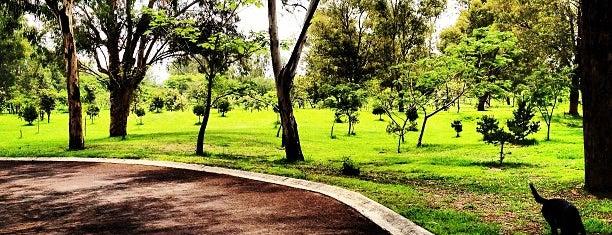 Parque Metropolitano is one of สถานที่ที่ Nayeli ถูกใจ.