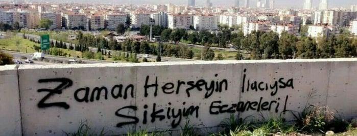 Girne Çatalköy Yolu is one of Locais curtidos por 💄🎀YsMN.