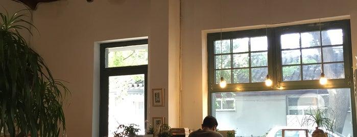 美树馆 Treescape is one of Coffee & Café in Beijing.