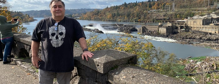 Willamette Falls is one of places I want to go.