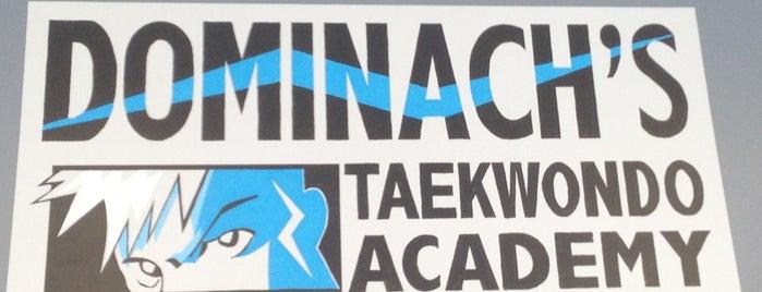 Dominach's Taekwondo Academy is one of Matt'ın Beğendiği Mekanlar.